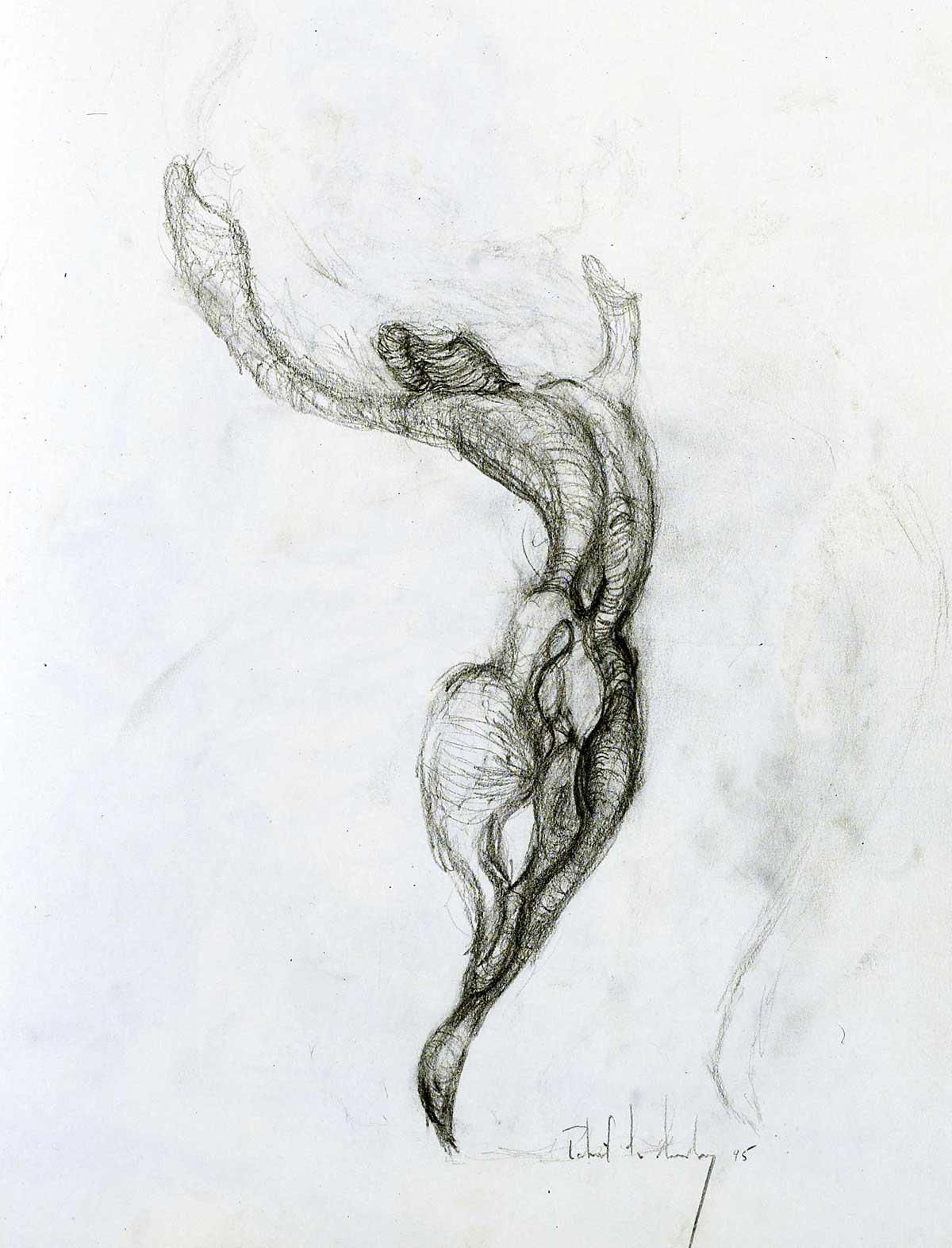 joy-sketch